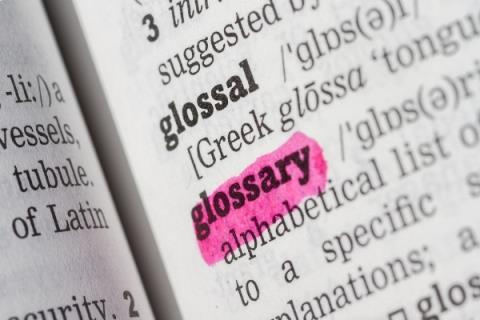 Glossary of terms fact sheet